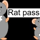 rat-passion
