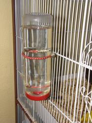 Biberon plastique rat