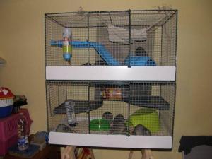 Cage maison rat