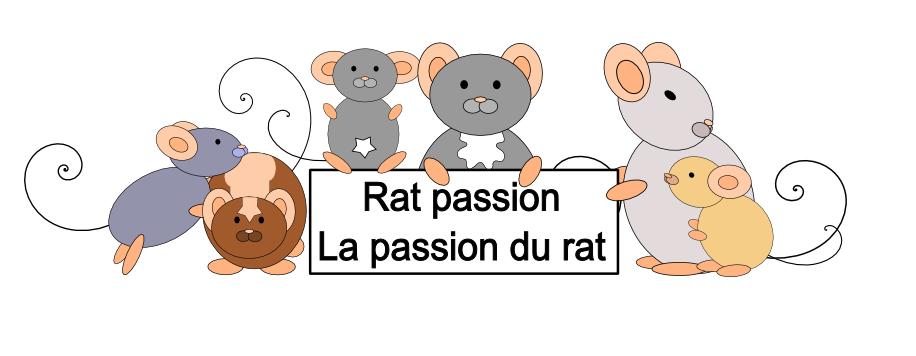 Bienvenu sur le site rat passion !